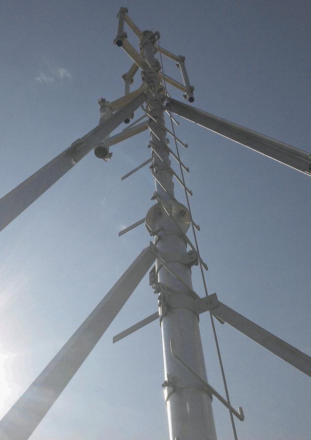 SPVND009 mastro 2